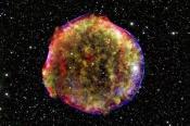 Supernova Progenitor Found?