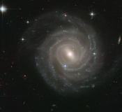 Anne's Image of the Day: Barred Spiral Galaxy UGC 12158