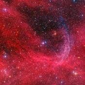 Anne's Image of the Day: The WR 134 Ring Nebula
