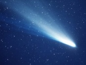 Evidence that Comets could have Seeded Life on Earth