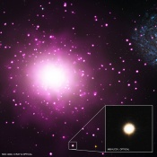 The Densest Galaxy In the Nearby Universe Found